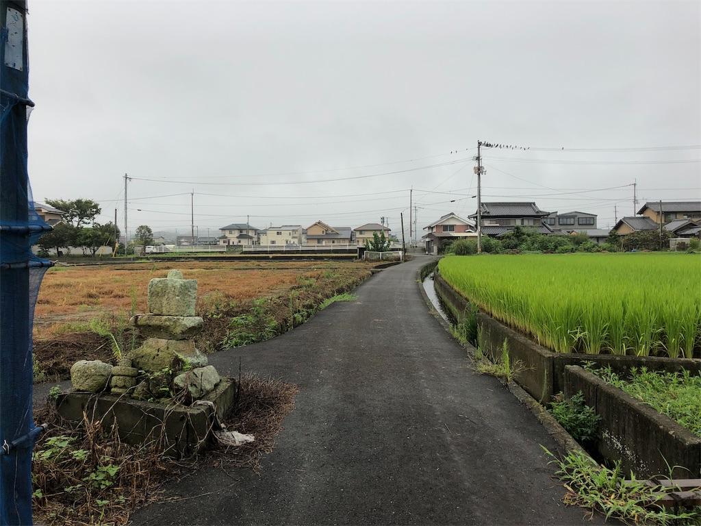 f:id:sikakebunko:20190912224914j:image