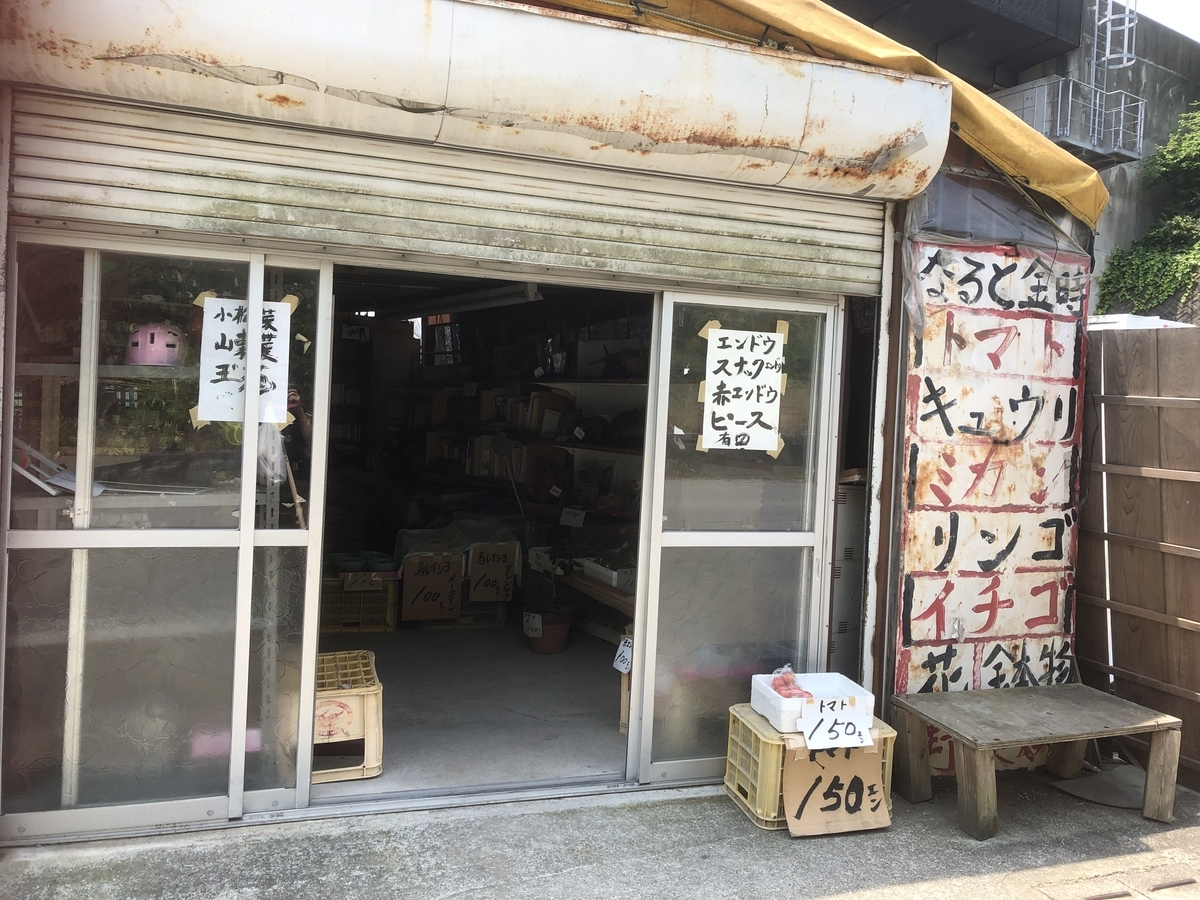 f:id:sikakebunko:20190922214950j:plain