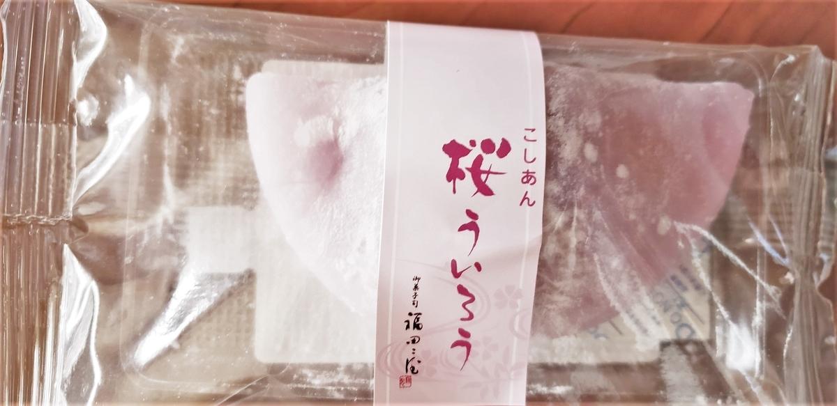 f:id:sikanosuke6:20210328124007j:plain