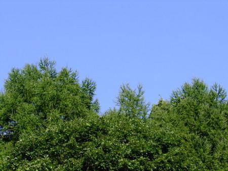 f:id:sikihuukei:20100915045329j:image