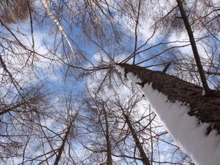 f:id:sikihuukei:20111126185203j:image