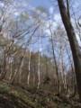 [小樽の風景]裏山にて2012年5月3日撮影