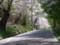 手宮公園にて2012年5月9日撮影