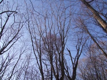 f:id:sikihuukei:20121213142307j:image