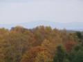 [小樽の風景]裏山にて2013年10月26日撮影