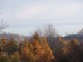 [小樽の風景]裏山にて2013年11月9日撮影