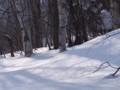 [小樽の風景]裏山にて2014年2月26日撮影