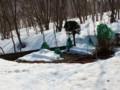 [小樽の風景]庭にて2014年4月2日撮影
