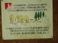 [小樽の風景]なえぼ公園にて2014年7月15日撮影
