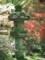 青蓮院2015年4月24日撮影