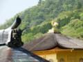 [姫路・京都の旅]金閣寺2015年4月24日撮影