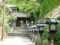 長楽寺2015年4月24日撮影