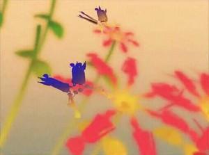 f:id:sikii_j:20080414201839j:image