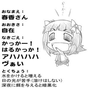 f:id:sikii_j:20081106204903j:image