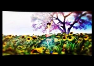f:id:sikii_j:20100107223037j:image