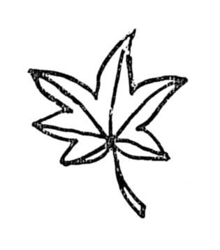 f:id:sikimidaigarden:20210115112352j:plain