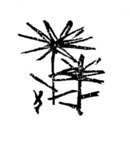 f:id:sikimidaigarden:20210308075435j:plain