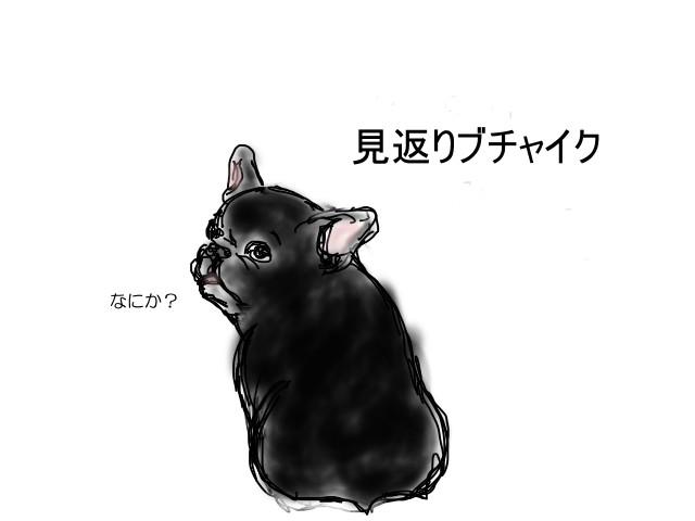 f:id:sikinari:20170406212739j:plain
