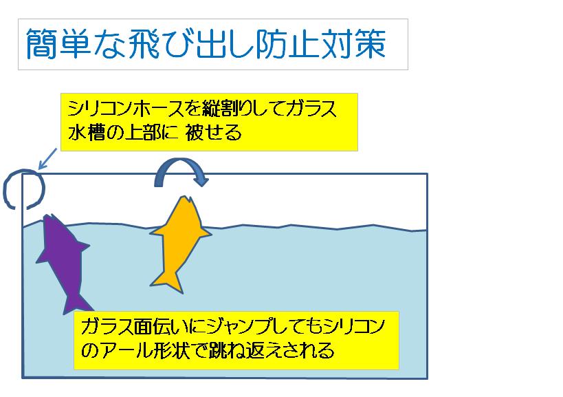 f:id:sikinomori117:20191013044150p:plain