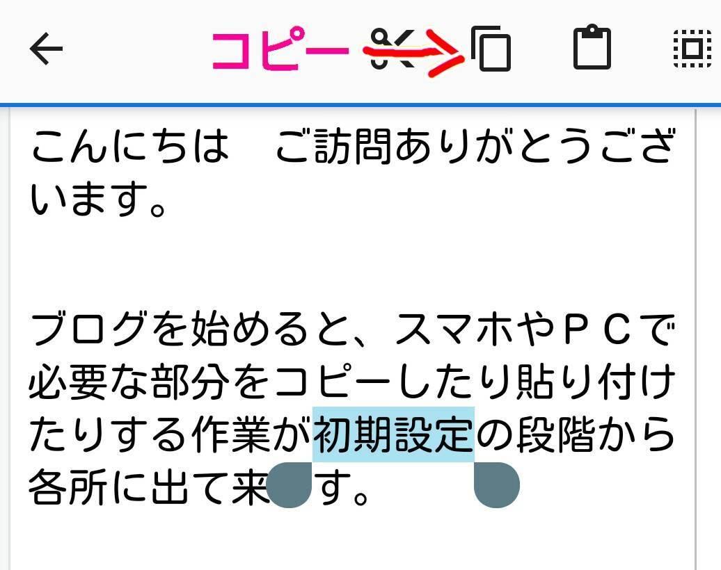 f:id:sikinomori117:20191108163257j:plain