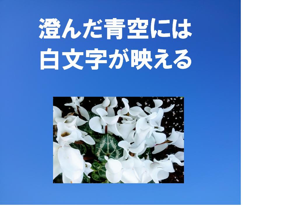 f:id:sikinomori117:20200312173151p:plain