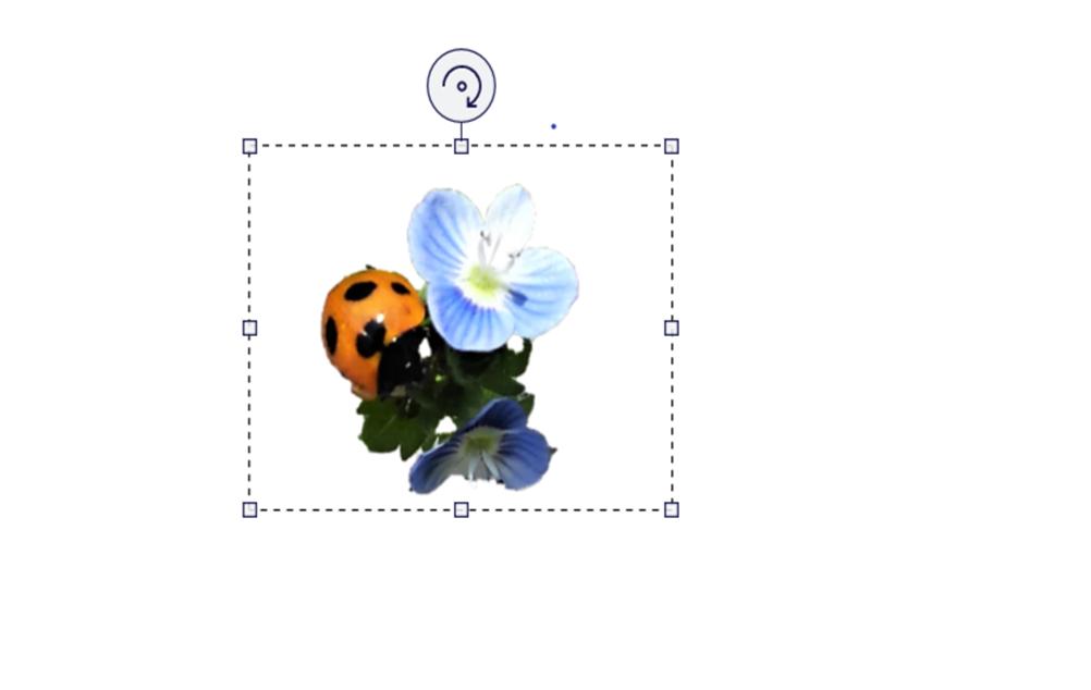 f:id:sikinomori117:20201211214123p:plain