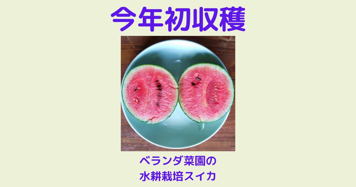 f:id:sikinomori117:20210710130818p:plain