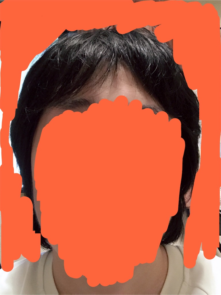 f:id:sikotaro:20181230005711j:image