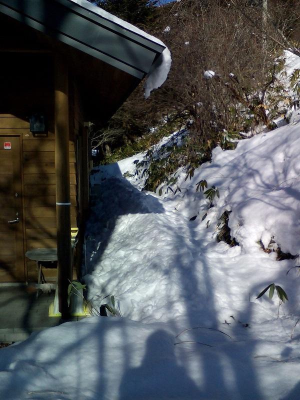 屋根から落ち溜まった雪