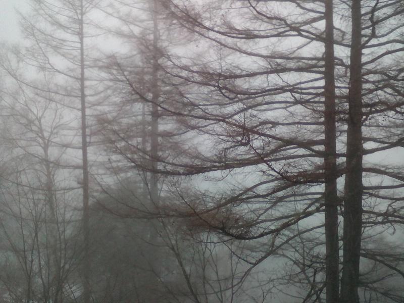 20210313-霧