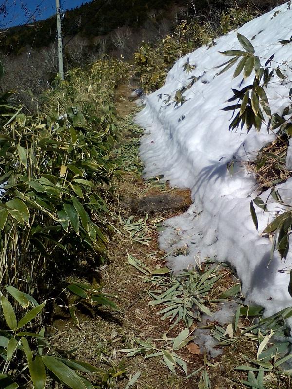 20210318-アプローチの雪融け