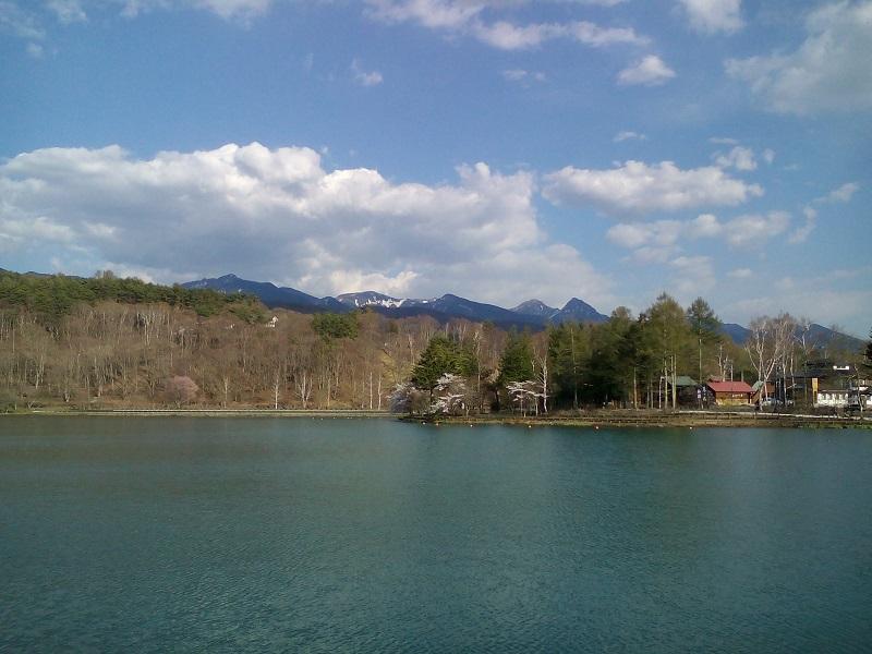20210421-蓼科湖の桜