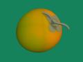 [果物]渋柿