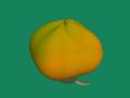 [果物]甘柿