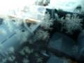[冬]車窓から