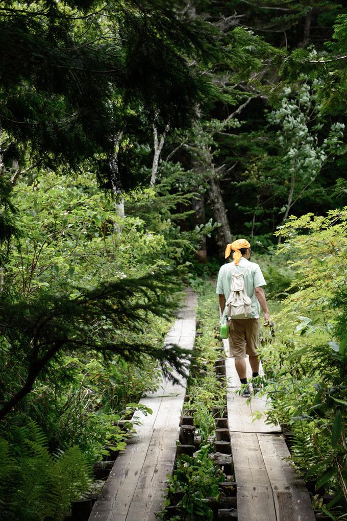 志賀高原 自然探勝コース2