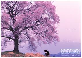 f:id:simokitazawa:20050210204710:image