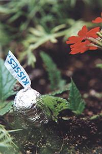 f:id:simokitazawa:20050725050350j:image
