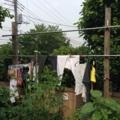 洗濯物20140617