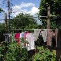 洗濯物20140619