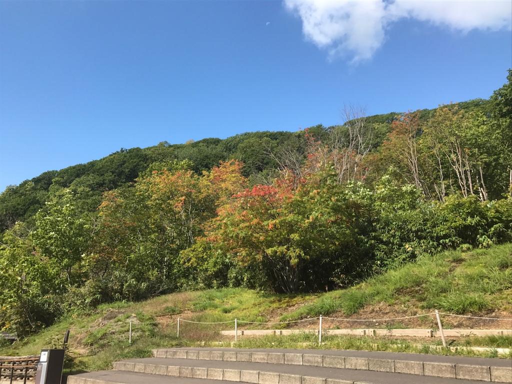 f:id:simple-kokyo:20170913162405p:image