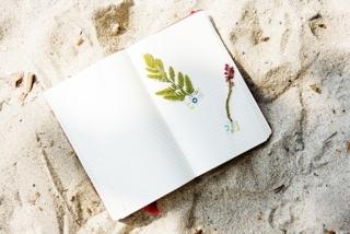 f:id:simple-life-diary:20171128171304j:plain