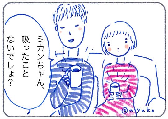 f:id:simplehome:20170606165121j:plain