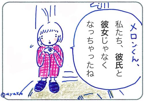 f:id:simplehome:20170706103744j:plain