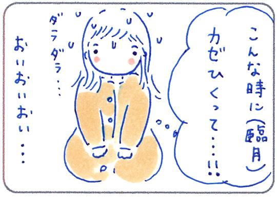 f:id:simplehome:20190202193513j:plain