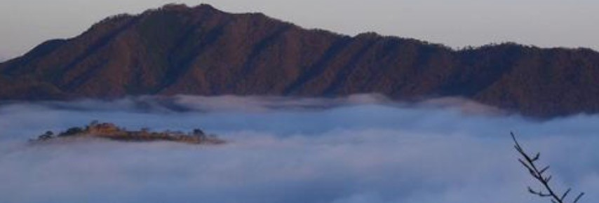 雲海スポットの雲海