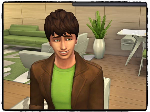 f:id:sims7days:20200404140552j:plain