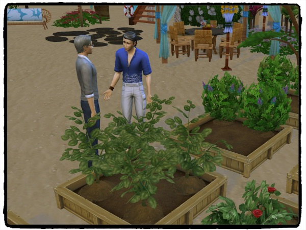 f:id:sims7days:20200423170445j:plain