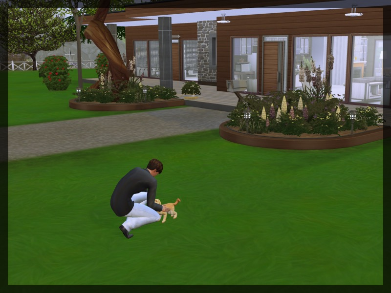 f:id:sims7days:20200728013306j:plain