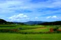 京都新聞写真コンテスト 加茂の風景